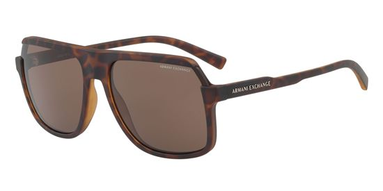 Picture of Armani Exchange AX4066S Sunglasses