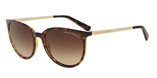 Picture of Armani Exchange AX4048SF Sunglasses