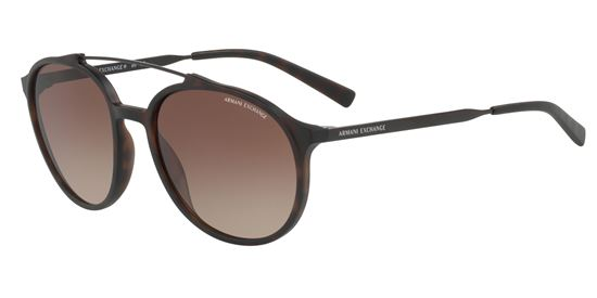 Picture of Armani Exchange AX4069SF Sunglasses