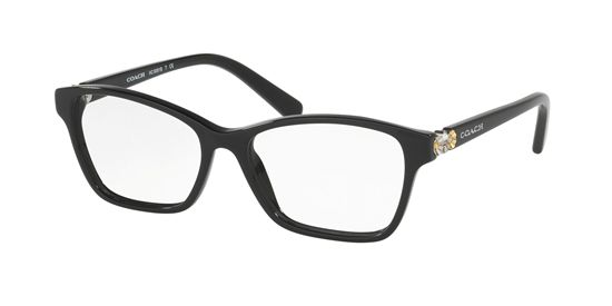 Picture of Coach HC6091B Eyeglasses